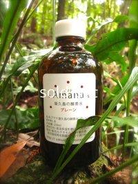 テネモス Amana 屋久島の酵素水 プレーン 250ml 瓶入