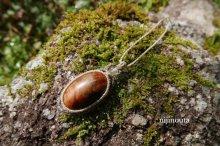 他の写真3: 樹齢千年太古の記憶∞屋久杉・水晶・シトリン