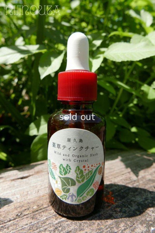 画像1: 屋久島∞薬草ティンクチャー wild and organic herb  with crystal